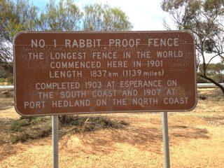 rabbit proof 4