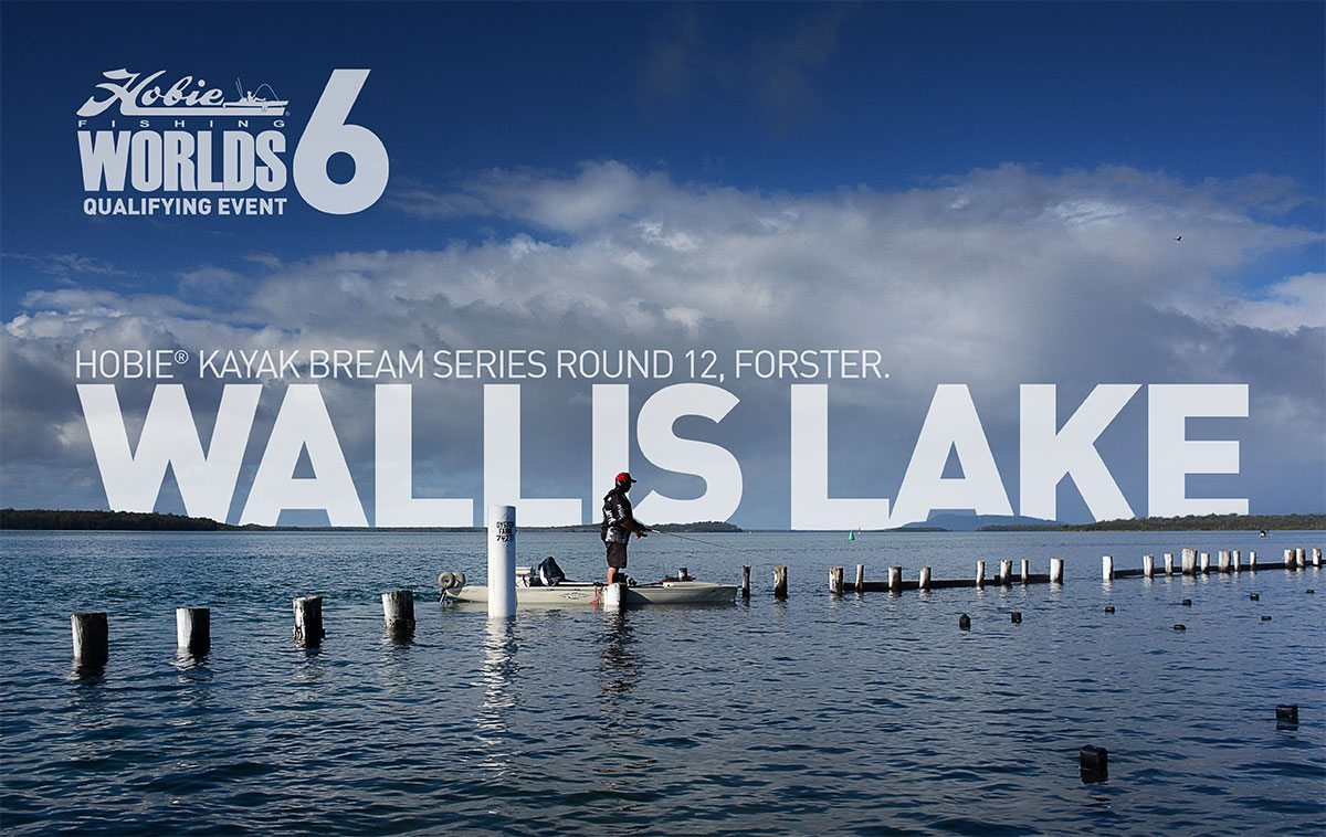 wallis-lake-1