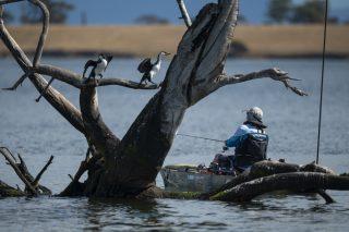 hobie fishing series 13 round 1 nicholson river 16