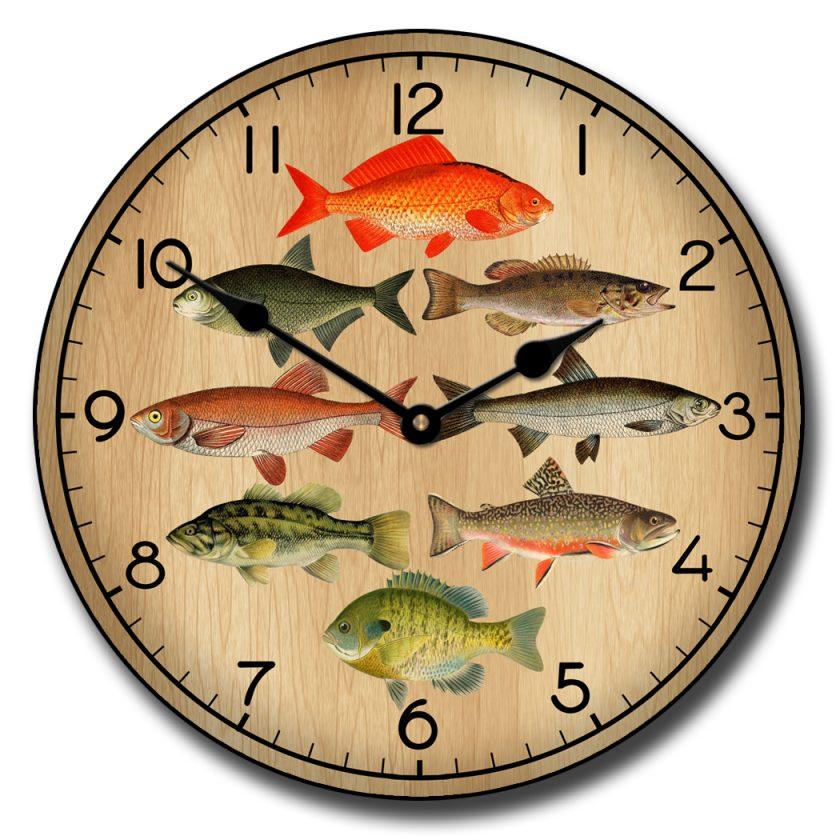Fish C